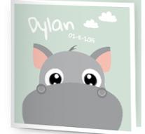 Geboortekaartje met foto besteld